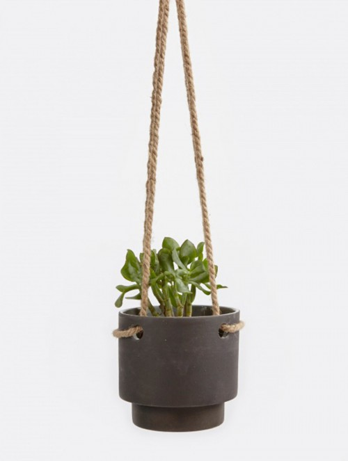 Plant-Hanger-Medium
