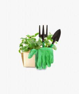 Small - Grow Bag